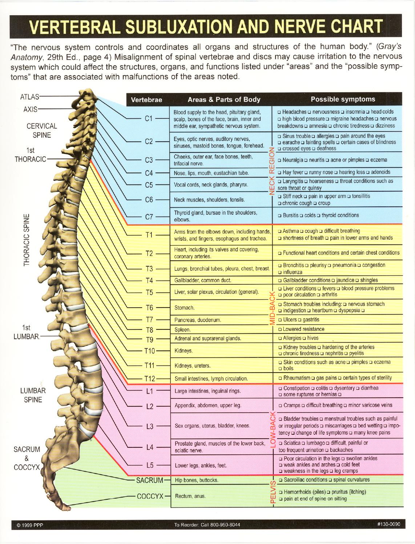 Chiropractor | DeLand Chiropractic & Spinal Decompression
